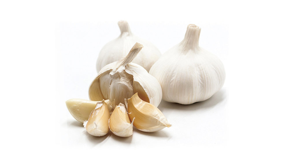 Pure White Garlic Packaging & Delivery